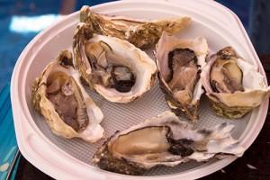 französische Austern